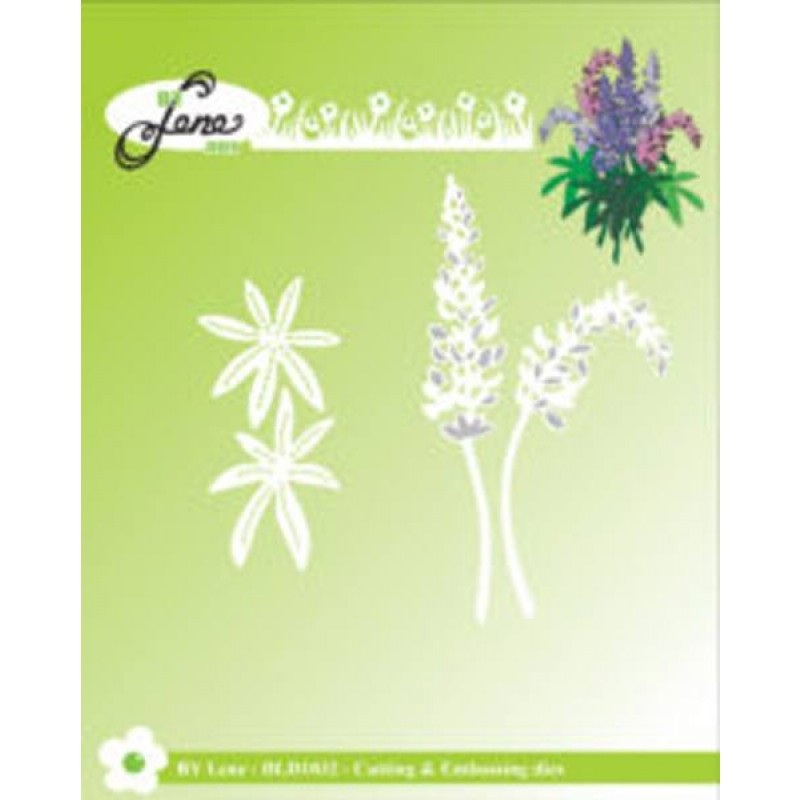 Lupins blomst - Lupins dies